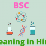 BSC Meaning in Hindi