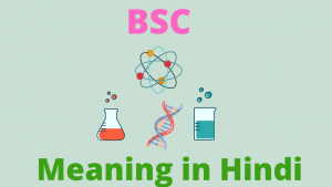 Read more about the article BSC Meaning in Hindi
